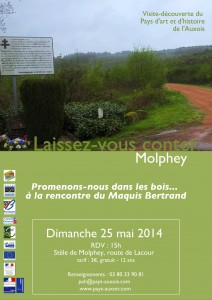 Molphey 21210